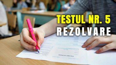 Photo of Rezolvarea testului de antrenament nr. 5 pentru Evaluarea Națională la limba și literatura română